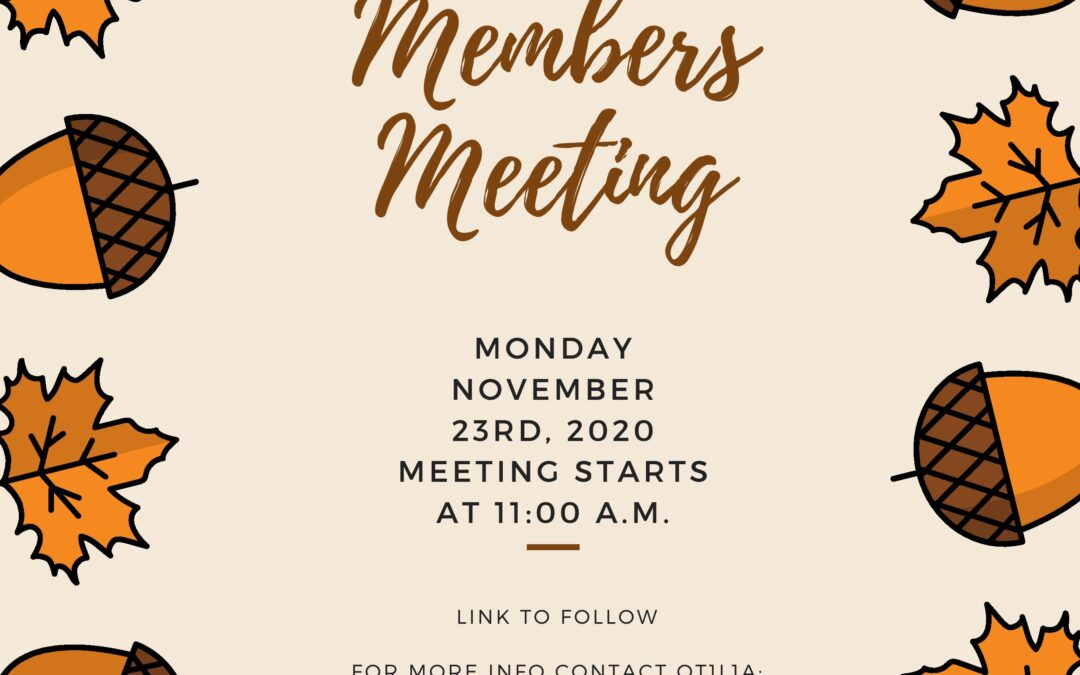 Virtual Members Meeting, November 23rd