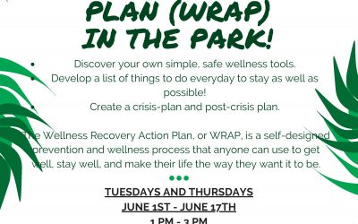 Wellness Recovery Action Plan (WRAP) in the park!